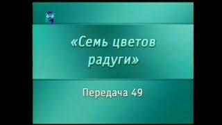 Искусство. Передача 49. Стили, техника и сюжеты первобытного искусства