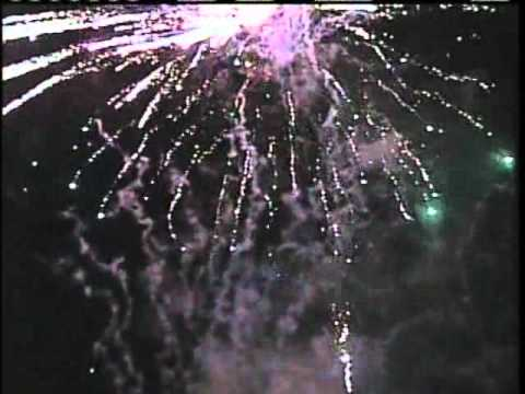 Local Politicians Attend Augusta Fireworks Demo