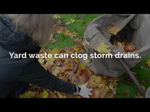 Yard waste can clog storm drains.