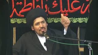 كيف تصرف أميرالمؤمنين عليه السلام بعد رحيل النبي محمد صلى الله عليه وآله وسلم - السيد منير الخباز