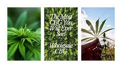 The most CBG you will ever see!  Best Wholesale CBG Flower & CBG Biomass - Quality Wholesale Hemp.