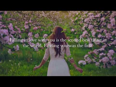The most beautiful Love Quotes