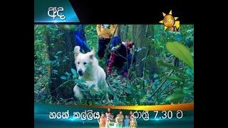 අද රාත්රී 7.30 ට හිරු TV බලන්න | හතේ කල්ලිය Thumbnail