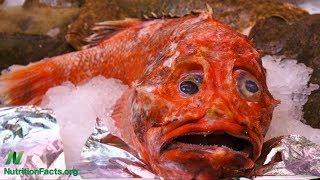 Červené a bílé rybí maso: červené ryby a fibrilace síní