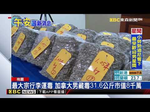 最大宗行李運毒 加拿大男藏毒31.6公斤市值8千萬