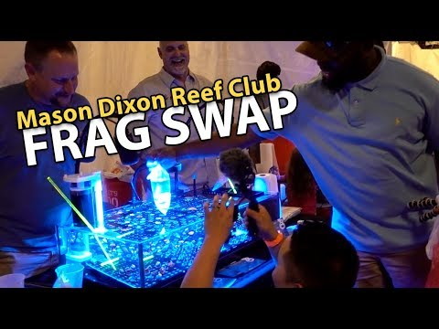 Shopping with Local Reefers!! (MDRC Frag Swap 2018)