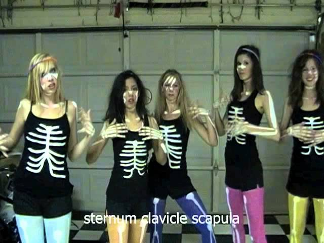 Anatomy Bone Dance