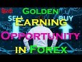 Golden Earning Opportunity In Forex (In Hindi/Urdu) | Forex Account Management Service