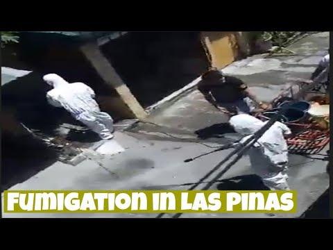 Street Fumigation In CAA, Las Pinas City | Covid-19