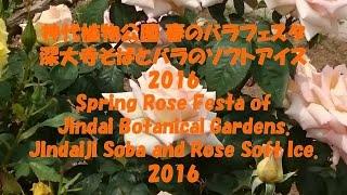 神代植物公園 春のバラフェスタ 深大寺そば バラのソフトアイス2016 Spr...