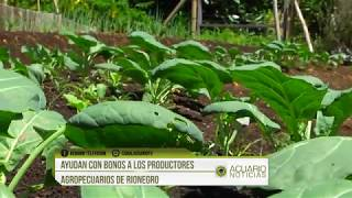 Ayudan con bonos a los productores agropecuarios de Rionegro