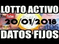 LOTTO ACTIVO DATOS FIJOS PARA GANAR  20/01/2018 cat06