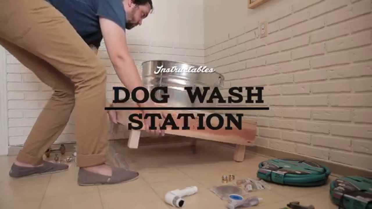 Dog washing station youtube dog washing station solutioingenieria Choice Image