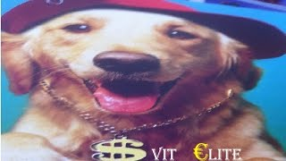 Svit Elite - Стиль собачки (Потап, Настя и Бьянка cover) [Official music video]