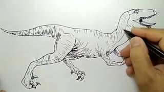 cara menggambar dinosaurus raptor / how to draw raptor dinosaur