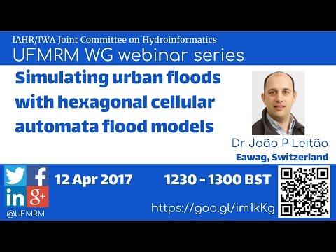 UFMRM Webinar Series 001