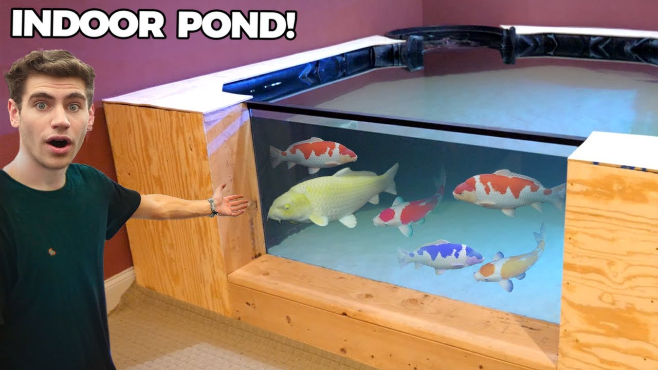 Building The LARGEST Indoor Koi Pond *DIY (2300 GALLONS)