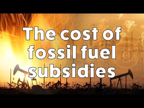 The Cost of Fossil Fuel Subsidies