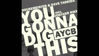 Housemeister & Dave Tarrida - You Gonna Dig This (joeFarr Remix) [AYCB]