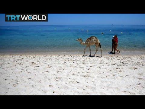 Tunisia back on the map as top destination | Money Talks