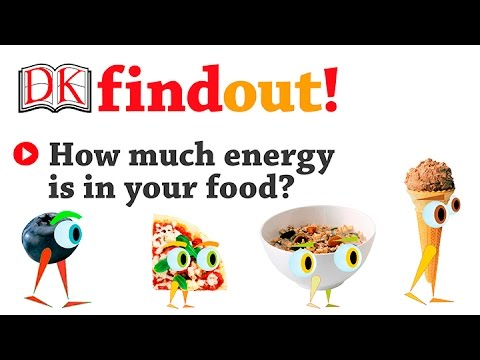 How Much Energy is in Your Food?