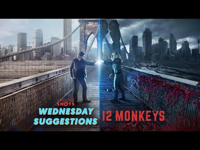 12 Monkeys by Terry Matalas and Travis Fickett | Wednesday Suggestions