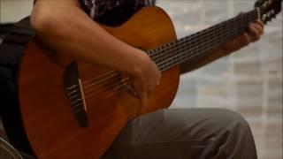 test guitar EKO Est