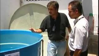 Sani House - Limpeza e Desinfecção de Caixa d