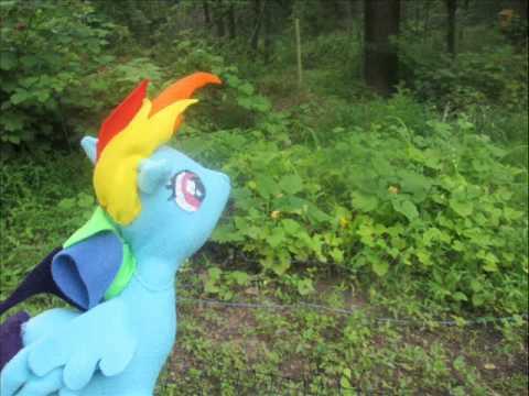 Rainbowdash Plush 2