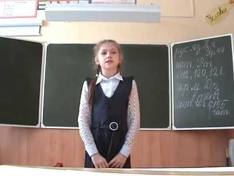 Изображение предпросмотра прочтения – ЕкатеринаХабаркова читает произведение «Лисица и виноград» И.А.Крылова