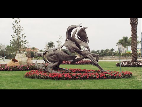 Winter Equestrian Festival (WEF) at PBIEC, Wellington, Florida