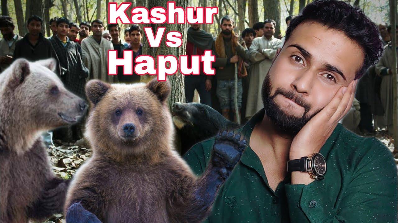Kashur Teh Haput 😂 Idrees Mir Reacts