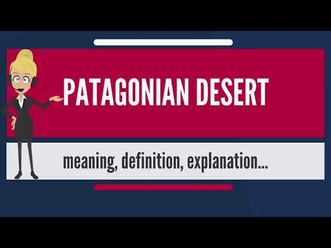 What is PATAGONIAN DESERT? What does PATAGONIAN DESERT mean? PATAGONIAN DESERT meaning