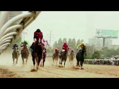 2016 China Equine Cultural Festival- Ordos, Inner Mongolia