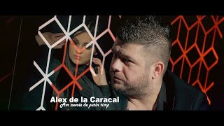 Alex de la Caracal - Am nevoie de putin timp ( oficial video 2019 )