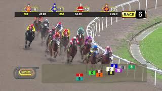 Vidéo de la course PMU PRIX COURSE 06