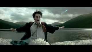 Harry Potter - Don