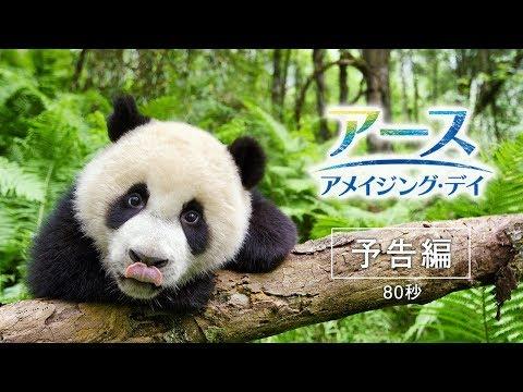 映画『アース:アメイジング・デイ』80秒予告