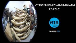 An Overview of the Environmental Investigation Agency