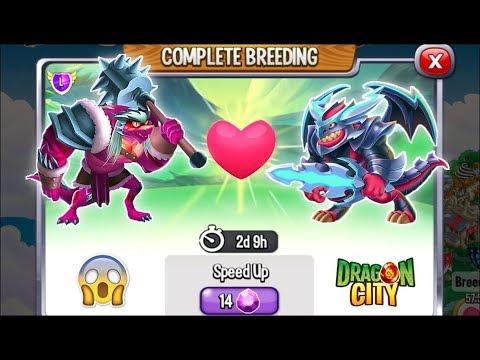 Dragon City: Barbarian Dragon vs Darksteel Dragon [EXCLUSIVE BREEDING] 😱 - 동영상