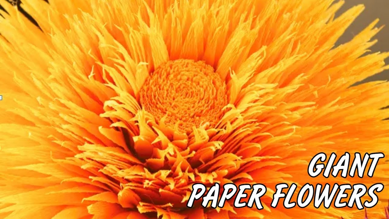 Giant crepe peper flowers - paper flower tutorial