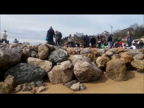 '¡Qué quiten el espigón!', canción-protesta de Chema Puente contra los diques de la Magadalena