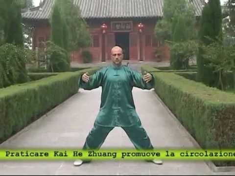 Wang Xian System Italy: Taiji yangsheng zheng qigong.flv