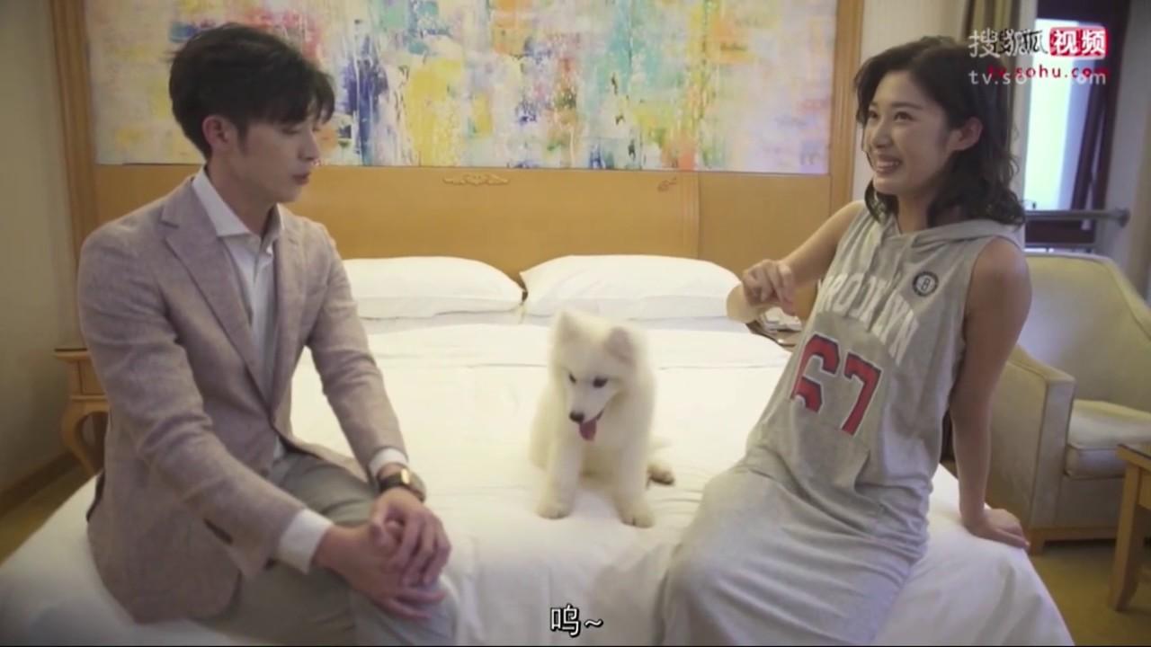 Å¥ˆä½•boss要娶我 Ɯ¨å·²æˆæ´² ĸŽå°èŒç‹—徐开骋 Youtube Enam tahun masa muda telah memberi makan anjing itu, dan sementara hidupnya. 奈何boss要娶我 木已成洲 与小萌狗 徐开骋