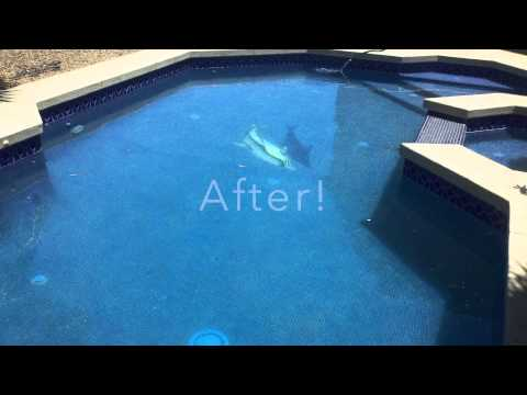 Ace Pool Service LLC Surprise Pool Service