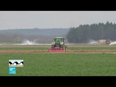 ريبورتاج: قطاع الزراعة الفرنسي يستعين باللاجئين لسد النقص في اليد العاملة  - 18:00-2020 / 4 / 8