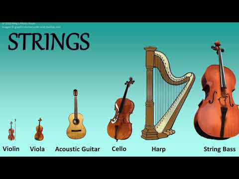 Music Minute - String Family