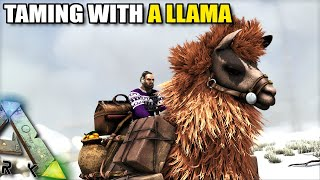 TAMING WITH A LLAMA | SAVING CHRISTMAS | ARK SURVIVAL EVOLVED EP2