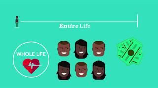 Understanding Life Insurance