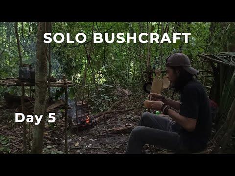 Day 5 Solo Bushcraft Indonesia   Isolasi Diri Di Hutan   Self Quarantine   Bushcraft Indonesia